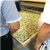 干燥行业内技术成熟的热泵菊花烘干机厂家