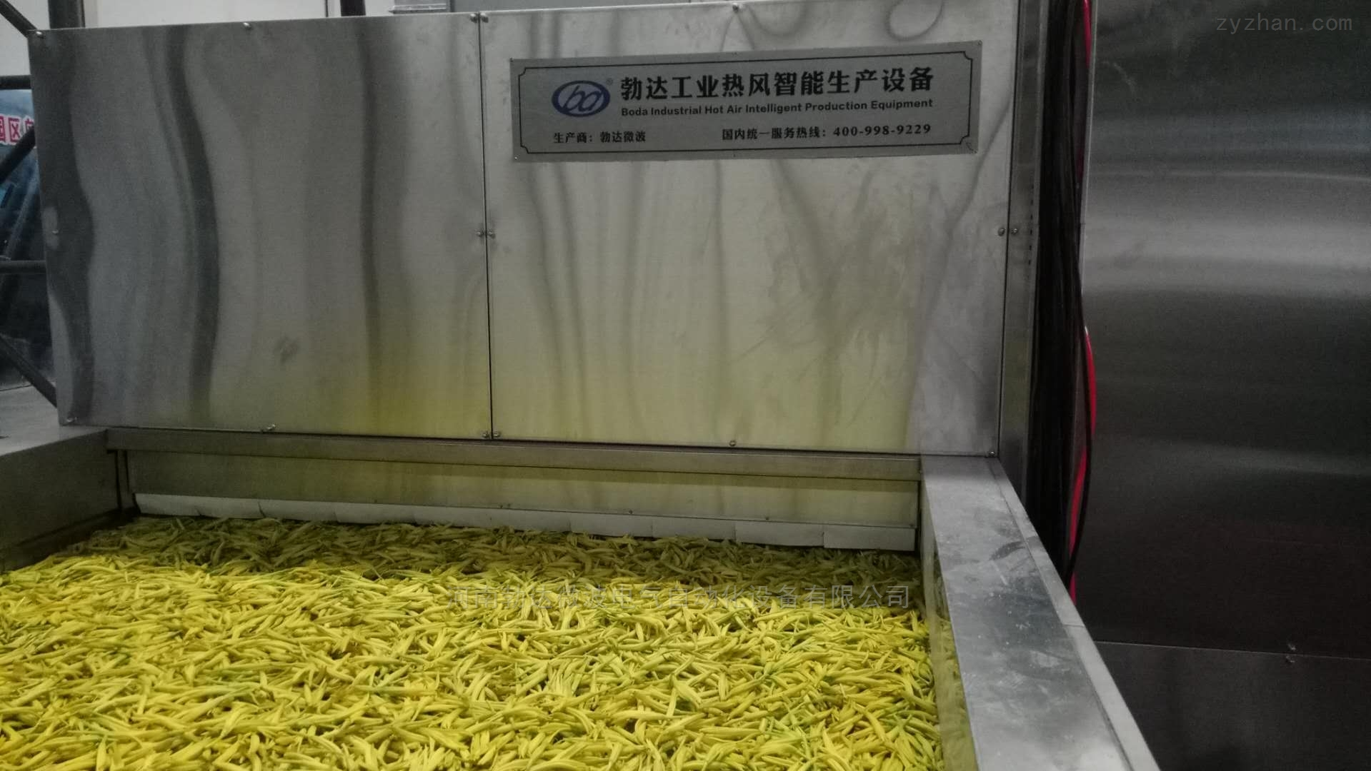 黄花菜网带式干燥机价格实惠