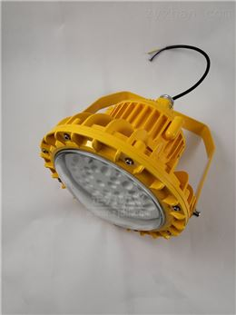 烟花厂防爆防尘LED免维护灯60W
