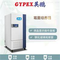 北京高校恒温恒湿培养箱250L