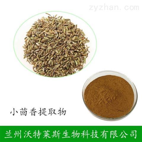 小茴香提取物 20:1 茴香萃取