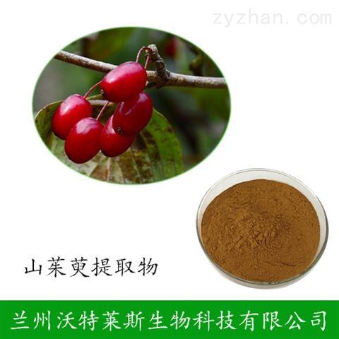 山茱萸提取物 30:1规格 茱萸肉比例提取粉