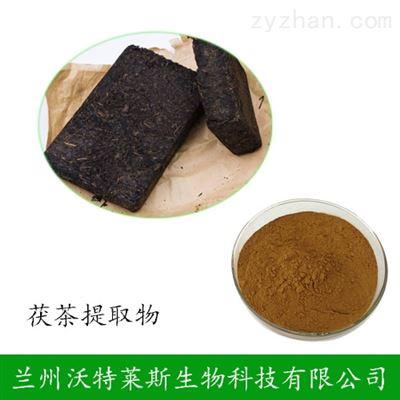 茯茶提取物 比例  可定制  茯茶粉