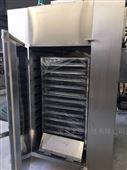 小型热风循环烘干箱