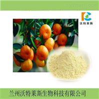 柑橘粉  柑橘提取物10:1  包邮