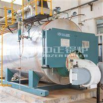 DHS天然气沼气燃气热水锅炉