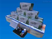 抗人绒毛膜促性腺素(HCG)抗体检测试剂盒