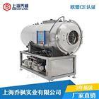 QFN-DGJ-FD系列生产型食品冷冻干燥机价格