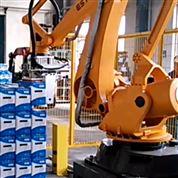 工业码垛机器人 全自动装箱码垛生产线