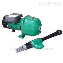 博士多220V家用深井增压泵 卧式井边抽水泵