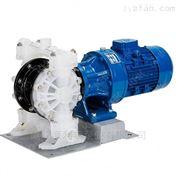 进口塑料电动隔膜泵(欧美品牌)美国KHK