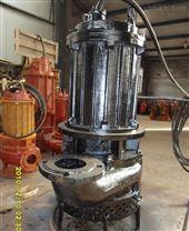 工厂沉淀池搅拌渣浆泵 电动灰渣泵