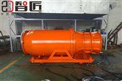 供应雪橇式潜水轴流泵