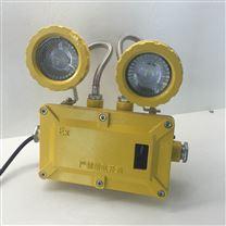 bAJ52通道LED防爆应急灯