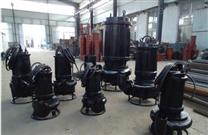 洗煤廠專用耐磨潛水煤泥泵