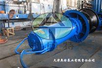 QZB28-50/4型潜水轴流泵-天津厂家