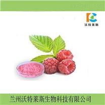 覆盆子粉 树莓提取物10:1 包邮