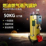 立式燃氣蒸汽發生器