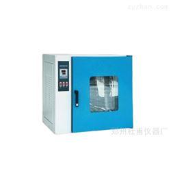 电热鼓风恒温干燥箱.老化恒温箱