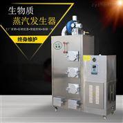 節能環保生物質蒸汽發生器