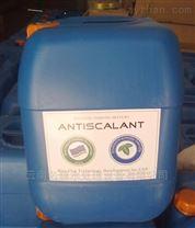昆明藍旗阻垢劑 反滲透水處理專用