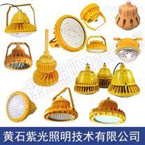 定西GB8051海洋石油平臺防爆燈