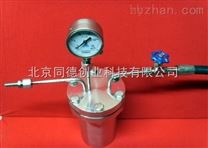 高溫高壓反應釜GFYF-01