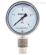 河南YE-100B不锈钢膜盒压力表