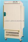 程控光照培养箱GZP-450S