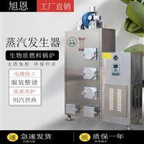 制药用蒸汽发生器环保生物质蒸汽锅炉