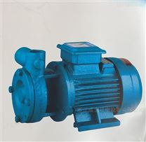 浙江成泉W系列旋涡泵