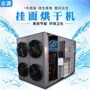 大小型挂面烘干机定制热风循环烘箱可靠