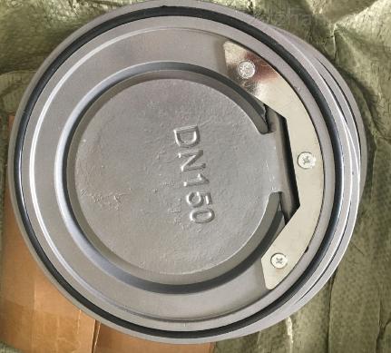 H74TC-10陶瓷对夹止回阀