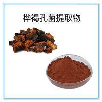10:1樺褐孔菌提取物保健原料