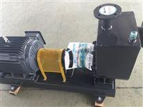 高扬程自吸泵