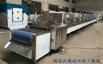 高效型微波殺菌干燥機,殺菌微波設備