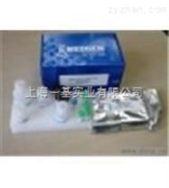 人6酮前列腺素F1a(6-keto-PGF1a)Elisa试剂盒