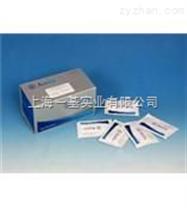 人类白细胞抗原A(HLA-A)Elisa试剂盒