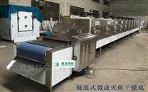 新型高效等离子微波杀菌干燥机,微波设备