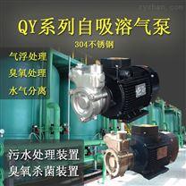 自吸化工制药泵气浮溶气泵不锈钢酸碱输送泵